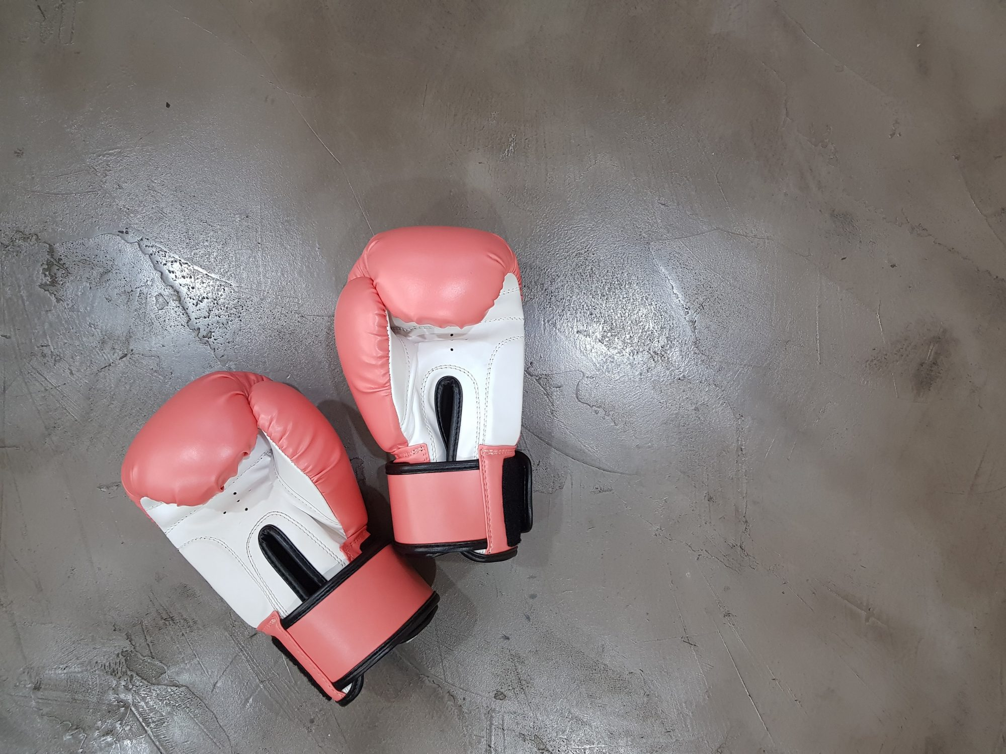 boxing gloves for the gym
